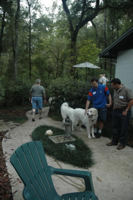 Pyrs and their people begin to arrive at the picnic.